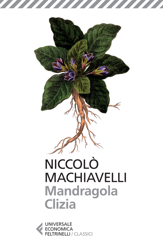 Mandragola - Clizia